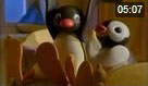 Pingu 122. Bölüm